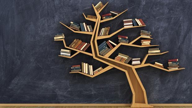 origen_de_la_palabra_libro