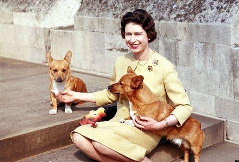 los-perros-de-la-reina-isabel-II