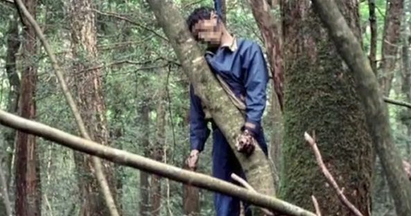 suicidios en el bosque de japon