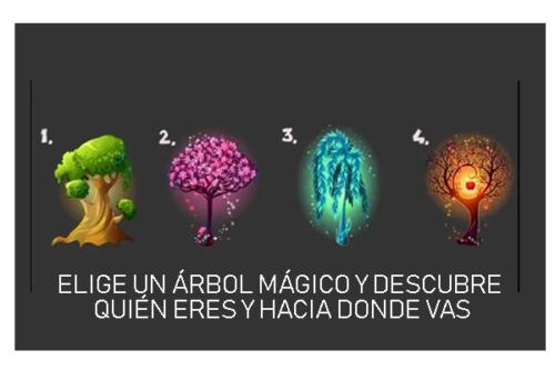 ÁRBOLES MÁGICOS: ELIGE UNO Y TE DIREMOS QUIÉN ERES Y HACIA DONDE VAS